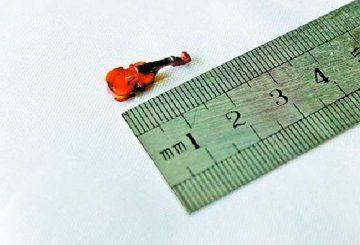 Самые-маленькие-музыкальные-инструменты